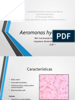 Aeromonas hydrophila