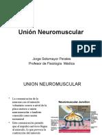 5. Union mioneural