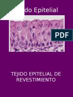 Tejido Epitelial y Glandular