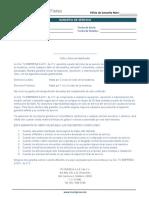 plantilla_de_politica_de_garantias_de_mi