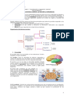 Guia de estudio sistema nervioso.docx
