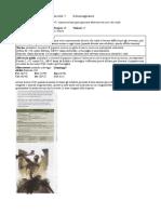 1.Pupazzo di neve pdf