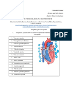 Grupo1_Taller fisiología.pdf
