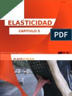 t.42 elasticidad