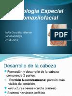 Embriología Especial Bucomaxilofacial (2).pptx