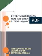 Enterobactérias nos diferentes sítios anatômicos
