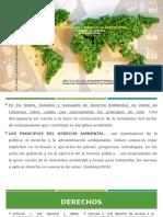 _PRINCIPIOS_AMBIENTALES 2020