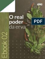 ebook-gratuito-Rt-Dia-02.pdf