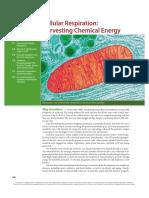 ch7-11.pdf