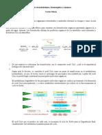 Taller _de_metabolismo.doc