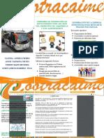 folleto riesgo publico TERMINADO 11.docx
