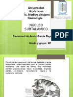 nucleo subtalamico