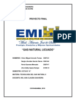 GAS NATURAL LICUADO.pdf