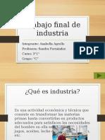 Trabajo final de industria.pptx
