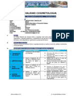 SILABO_TRATAMIENTO FACIAL 2019.docx