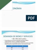 DEMANDA BIENES Y SERVICIOSPDF.pdf