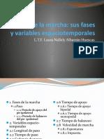 Análisis de las fases y variables.pptx