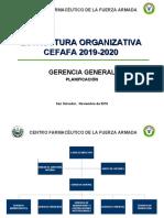 ESTRUCTURA_ORGANIZATIVA_CEFAFA_2019 (1)