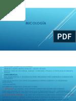 DIAPOSITIVAS MICROBIOLOGÍA-MICOLOGÍA.pdf