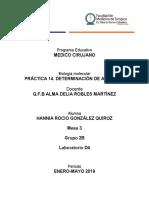P14. DETERMINACIÓN DE ALBÚMINA.docx