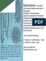 diatom book-1.pdf
