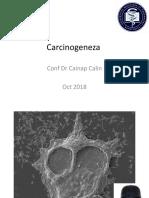 1. Carcinogeneza 2019.pptx