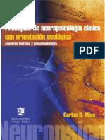 387552368-Principios-de-neuropsicologi-a-clinica-con-orientacion-ecologica