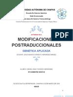 MODIFICACIONES POSTRADUCCIONALES.docx