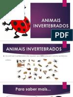 ANIMAIS INVERTEBRADOS - final-convertido