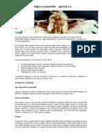 96308369-Anatomia-Patologica-a-Pasarilor.pdf