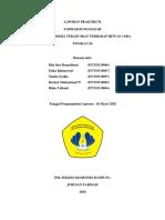 Kelompok 6_1B_Indeks Terapi Obat