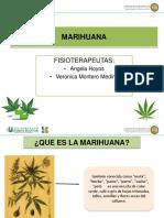 Marihuana (1).pdf