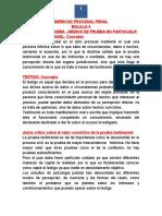 Derecho Procesal Penal Bolilla 9