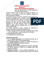 Derecho Procesal Penal Bolilla 11