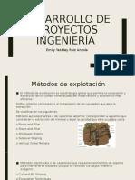 Desarrollo de proyectos ingeniería.pptx
