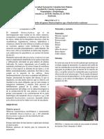 informe 3 Rotylenchulus reniformis y Hemicycliophora spp