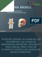ANATOMÍA BÁSICA.pptx