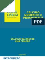 Métodos numéricos e Computação - Raízes - Dicotomia 2016.2.pptx