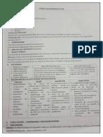 Formato presentacion proyectos trabajo