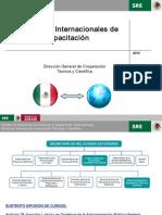 Programas Internacionales de Capacitacion