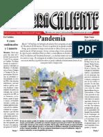 Periódico Tierra Caliente Edición 202