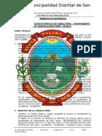 TDR-LEVANTAMIENTO DE OBSERVACIONES JARDINES