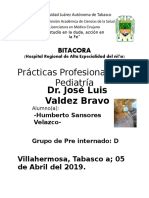 Formato Bitacora PP de Pediatria.docx