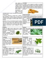 alimentos africa 2.0.docx