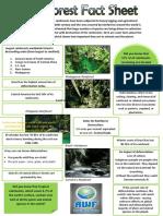 Rainforest Fact Sheet-merged
