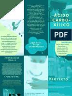 Ácido Carboxílico.pdf