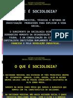O QUE É SOCIOLOGIA - SLIDES.pdf