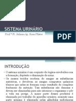 (14) SISTEMA URINÁRIO 01 12 2014 (1).pdf