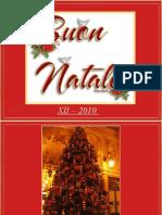 Italy at Christmas 2010