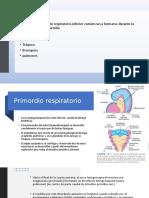 embrio sist. respiratorio.pptx